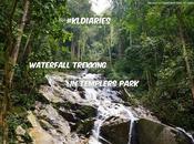 #KLDiaries: Waterfall Trekking Templer's Park