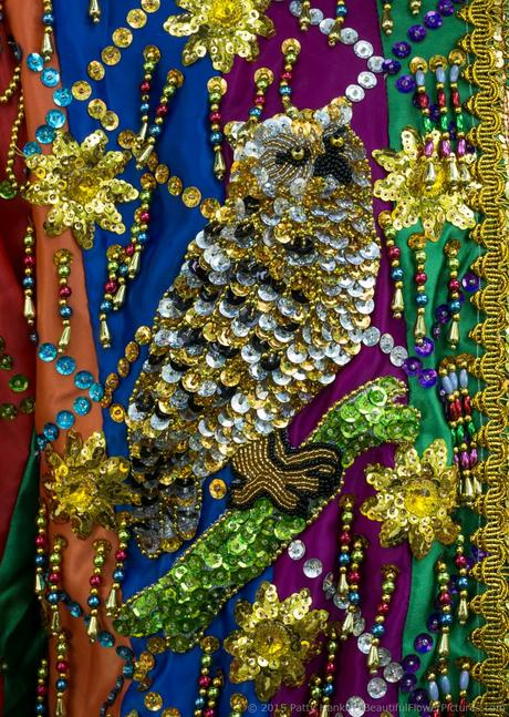 Sequins, 2015 Smithsonian Folklife Festival © 2015 Patty Hankins