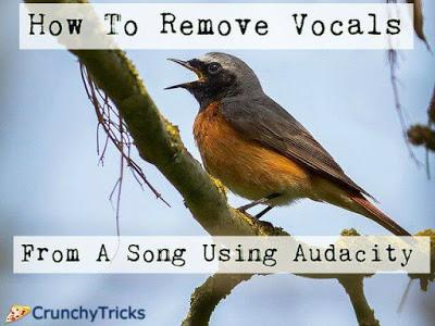 Remove Vocals From Song/MP3 Using Audacity - Paperblog