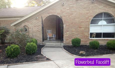 Flowerbed Facelift