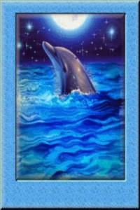 full-moon-dolphin-live-wallpap-781741-1-s-307x512