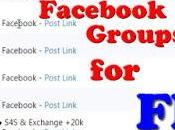Post Multiple Facebook Groups FREE