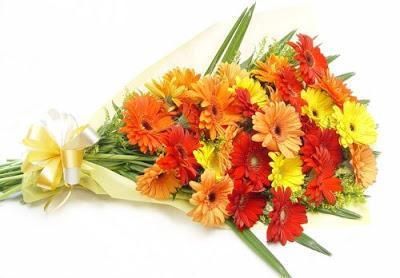 Choosing Flowers For A Newborn
