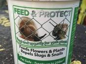 Product Review Envii Feed Protect