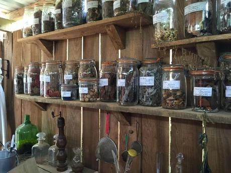 jars of seeds