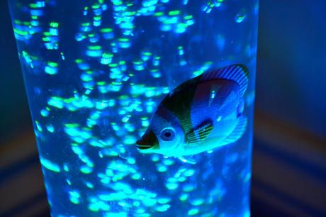 Value lights bubble lamp with 5 fish paperblog for Bubble fish lamp