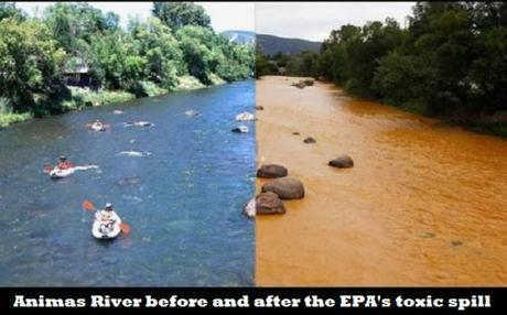 Animas River before and after EPA toxic waste spill