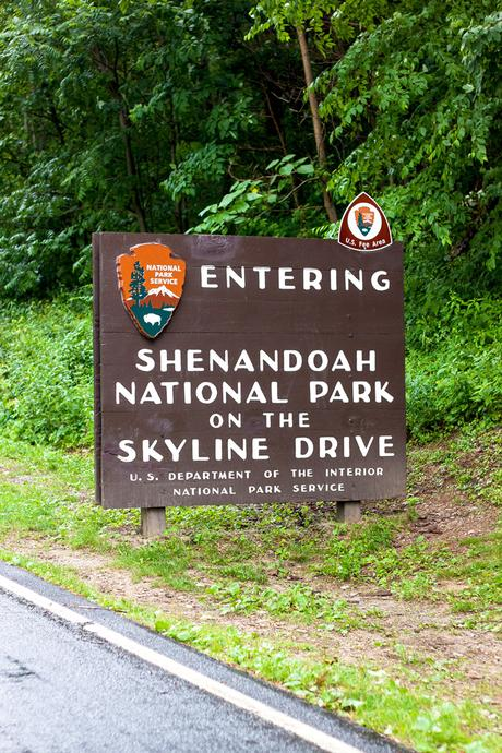 Shenandoah National Park // Cross-Country Road Trip Pt. 3