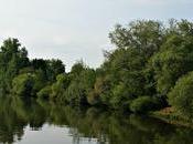 River Cruise Journal: Bamberg @VikingRiver #cruising