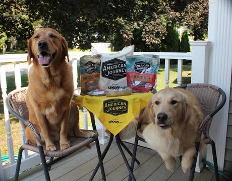 American Journey healthy dog treats review chewy.com