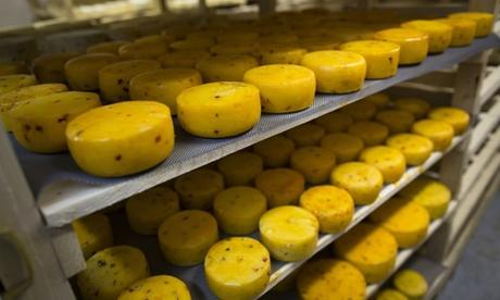 Russia bans and destroys - Cheese and other western-made foods !