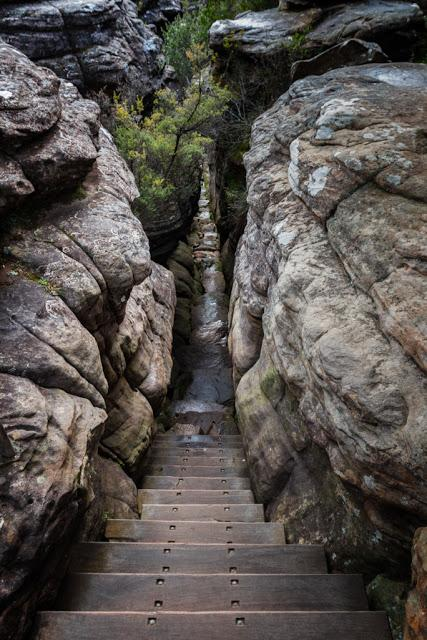 steps at silent street grampians