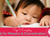 Foods That Boost Memory Concentration Kids