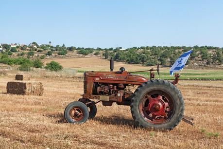 vintage Sharon tractor for sale on eBay