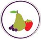 NS fruit logo 3