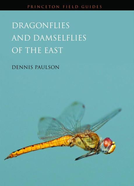 Review: Dragonflies and Damselflies of the East