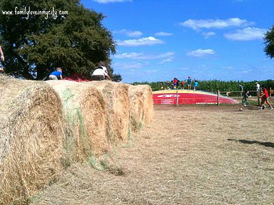 Corn shootin' and Hay ridin' at the South Texas Maize