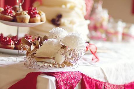 winter wedding blog by Lifeline Photography (19)