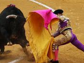 Bullfighting, Spain Purest!