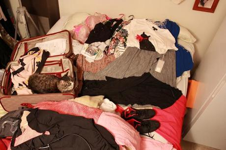 Packing for Belize