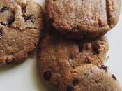 Cinnamon Chocochip Cookies
