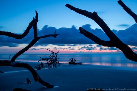Sunrise at Hunting Island State Park © 2015 Patty Hankins