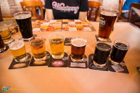 Flight of Mexican beer.