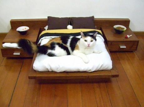 log cat bed 1