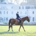 Fitness On Toast Faya Blog Girl Healthy Workout Idea Riding Coworth Park Equestrian Center Horse Fit Health Calorie Burn Muscle Tone Benefits of Riding-3