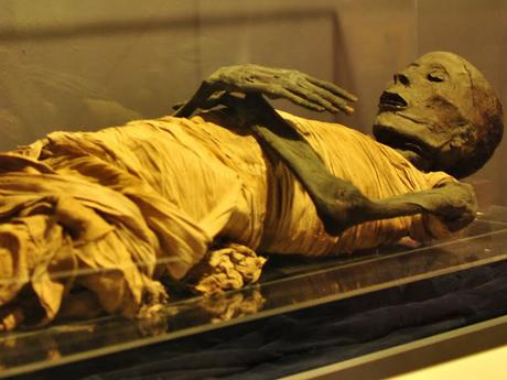 What are Mummies?