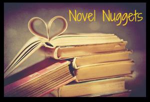 Novel Nuggets Button