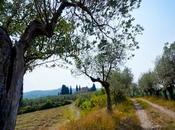 Mother Nature's School Italian Path