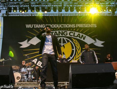Riot Fest 2015-832
