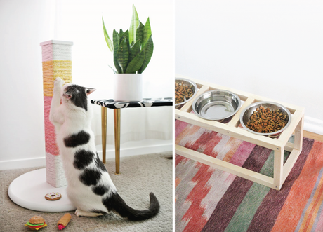 favorite-kitty-finds-diy