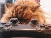 Nerdy Sony PlayStation Cats
