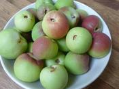 Quince Apple Jelly
