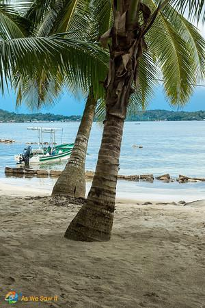 Palm trees, boats and beaches are the call of the day in Bocas Del Toro, Panama.