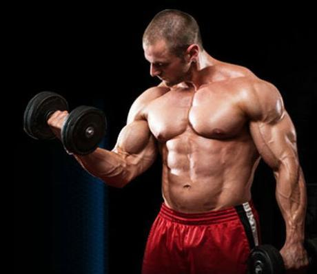 Bodybuilding supplements paperblog for Fish oil for bodybuilding