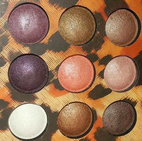 BH Cosmetics Wild Child Eye Shadow Palette Swatches