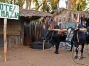 Scenes from Mahajanga, Madagascar