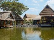 Bale Udang Mang Engking: Must-Try Seafood Restaurant Bali
