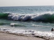 Beyond Sea, #1237