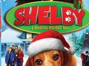 Shelby: Magical Holiday Tail Releases November