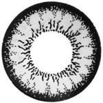Grey Circle Lens