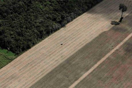 Deforestation and Drought