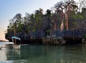Reasons Love Cruising Madagascar