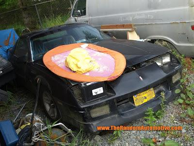 Rotting in Style - 1989 Chevy Camaro!