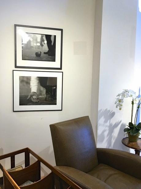 Stephen Sheffield B&W Self Portraits At Webster & Co