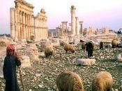 Overgrazing Major Cause Horror Syria
