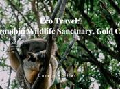 Travel: Currumbin Wildlife Sanctuary, Gold Coast
